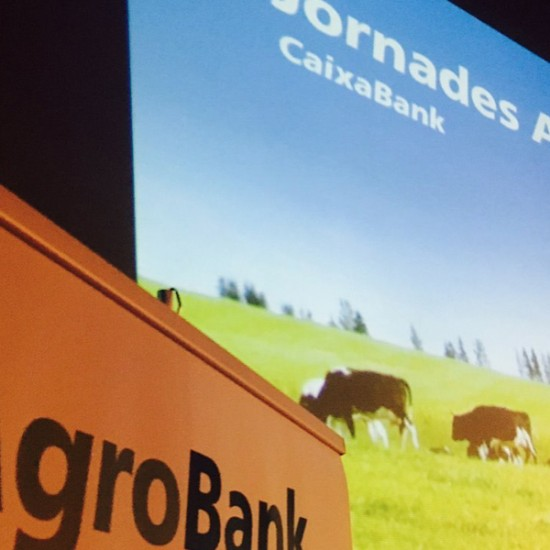 esencialproyectos-eventos-caixabank-agrobank-1