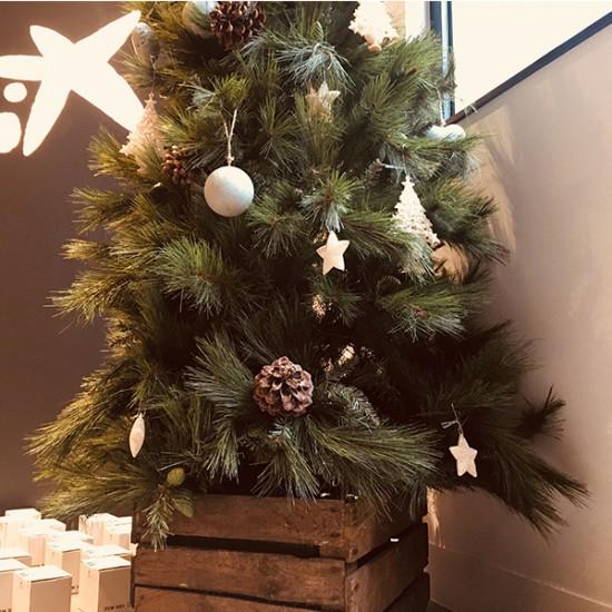 esencialproyectos-eventos-caixabank-navidad-dan-1