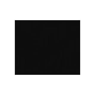 Patrício Reynés